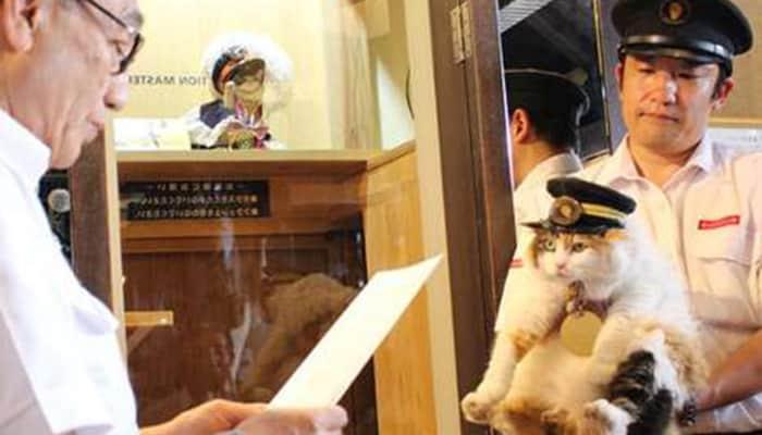 Natama Diangkat Jadi Kepala Stasiun di Jepang