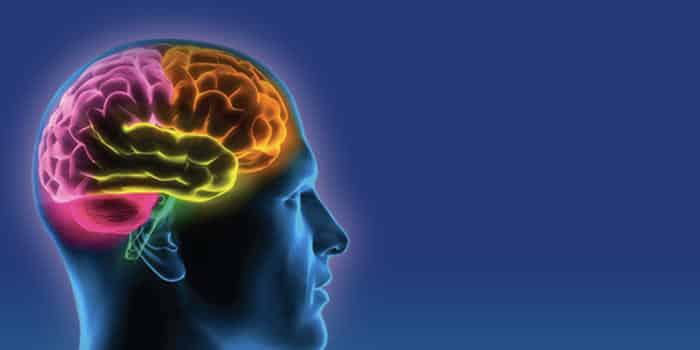 6 Tips Unik untuk Mengasah Otak