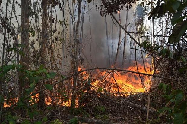 Pembakar Hutan Merapi Belum Ditangkap