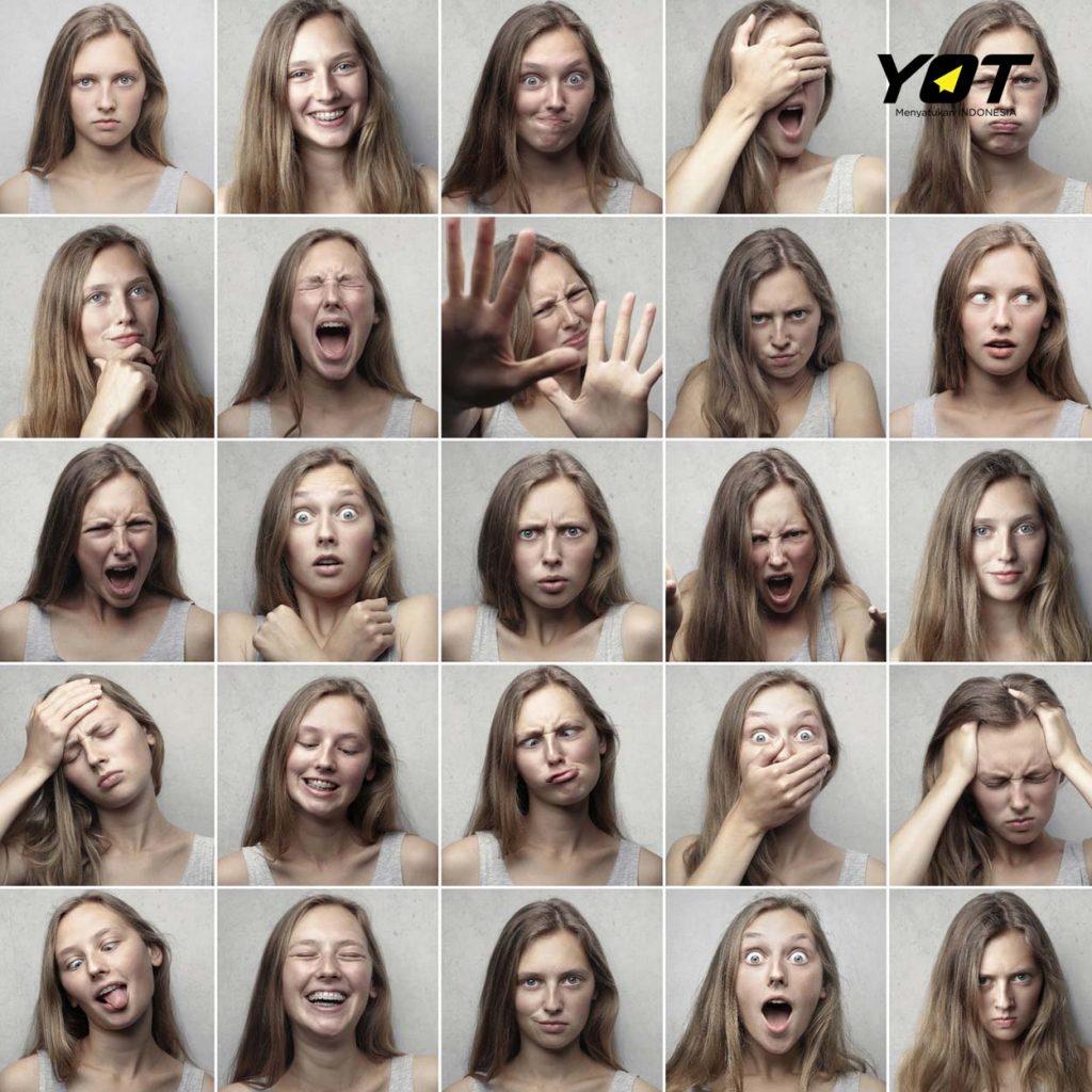 introvert vs ekstrovert dalam kesuksesan berkarir