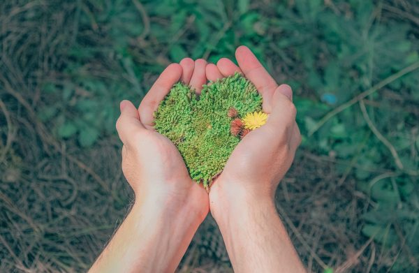 Kenapa Brand Wajib Peduli Sama Lingkungan