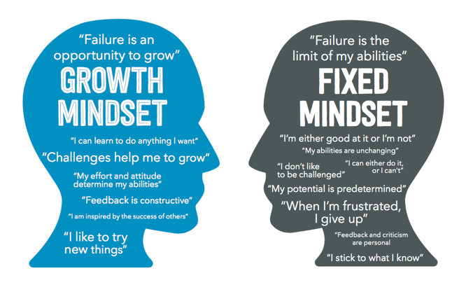 Fixed VS Growth Mindset, which one are you ? | Young On Top